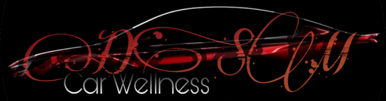 DSM Car Wellness