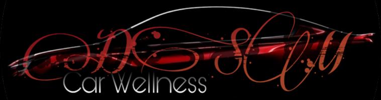 DSM Car Wellness